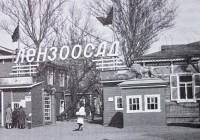 Ревизоры в зоопарке (1951)