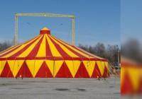Аудиторы в цирке (2015)